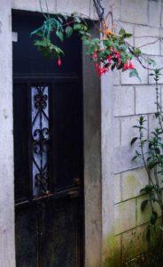 House Door in Fatima